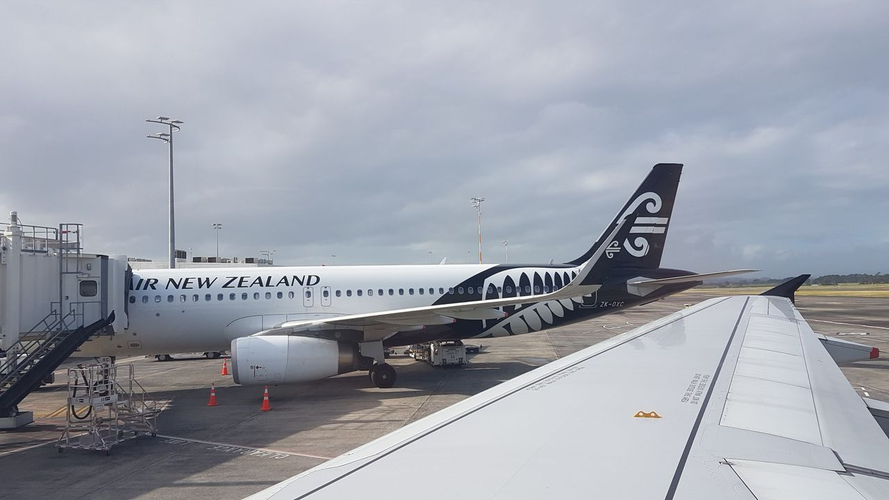 Find the best fares for domestic New Zealand flights with Air New Zealand. Book cheap domestic flights to and from Auckland, Wellington, Christchurch, Queenstown and more. Find cheap flights to New Plymouth. Palmerston North. Find cheap flights to Palmerston North.